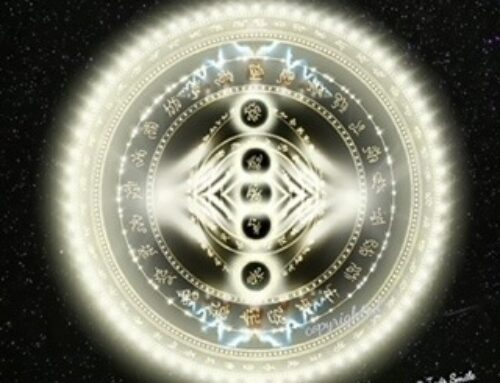 Unified Field/Hieros Gamos Quantum Disentanglement 20D Activated Tribal Signet Shield Transmission